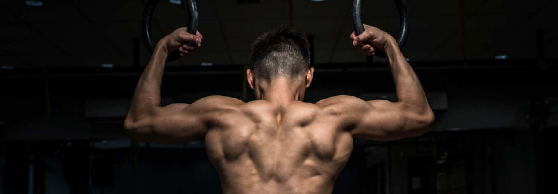 Two Best Upper Body Exercise To Fire Up Your Rear Delts