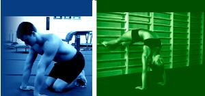 Gymnasticbodies fundamentals download