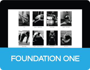 foundationSeriesNew