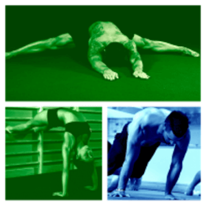 Three athletes demonstrate their gymnastic bodies
